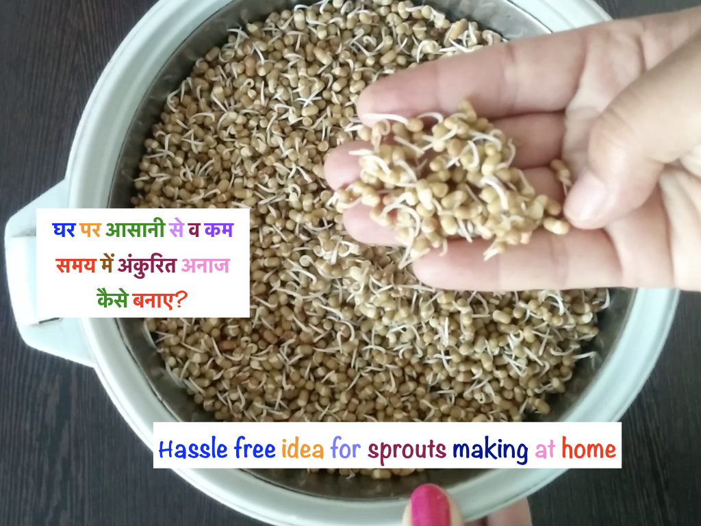 Hassle free idea for sprouts making at home